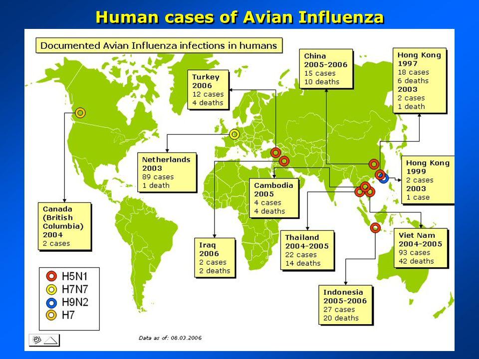 Human cases of Avian Influenza
