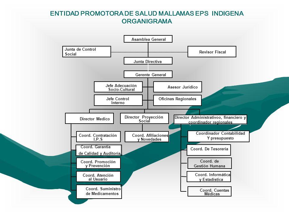 ENTIDAD PROMOTORA DE SALUD MALLAMAS EPS INDIGENA ORGANIGRAMA Jefe Adecuación Socio-Cultural Asesor Jurídico Jefe Control Interno Coord. Contratación I