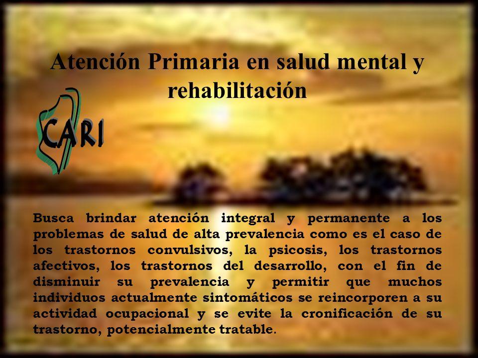 Busca brindar atención integral y permanente a los problemas de salud de alta prevalencia como es el caso de los trastornos convulsivos, la psicosis,