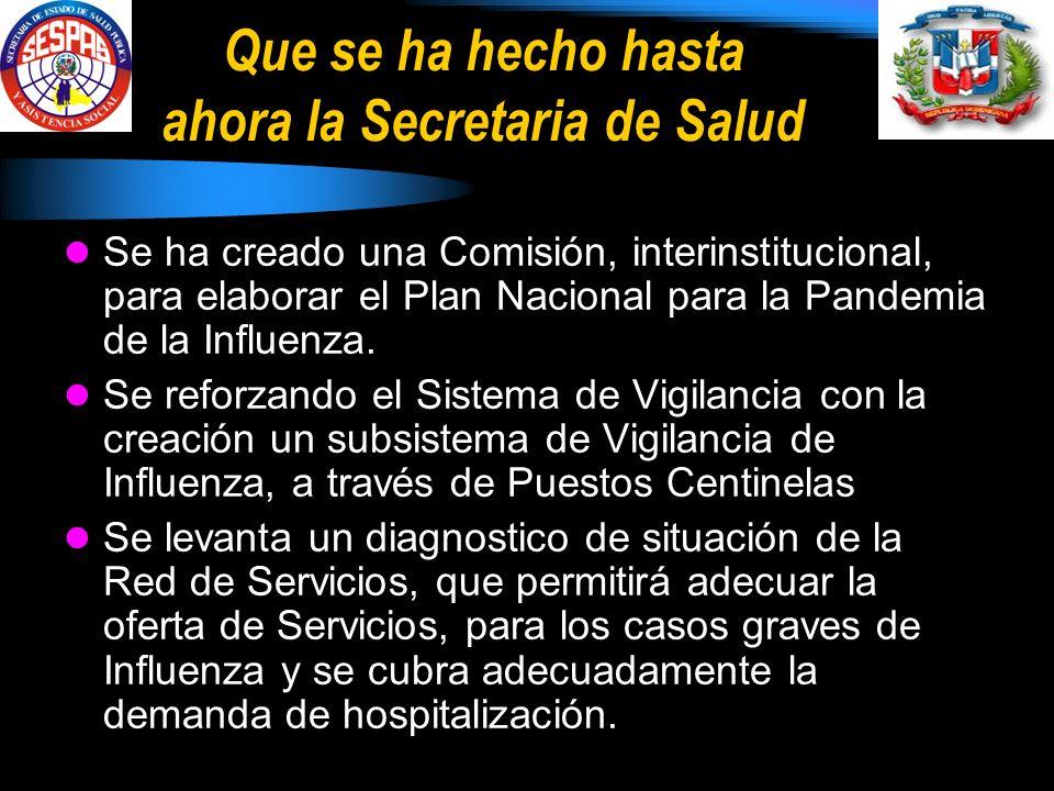 Que se ha hecho hasta ahora la Secretaria de Salud Se ha creado una Comisión, interinstitucional, para elaborar el Plan Nacional para la Pandemia de la Influenza.
