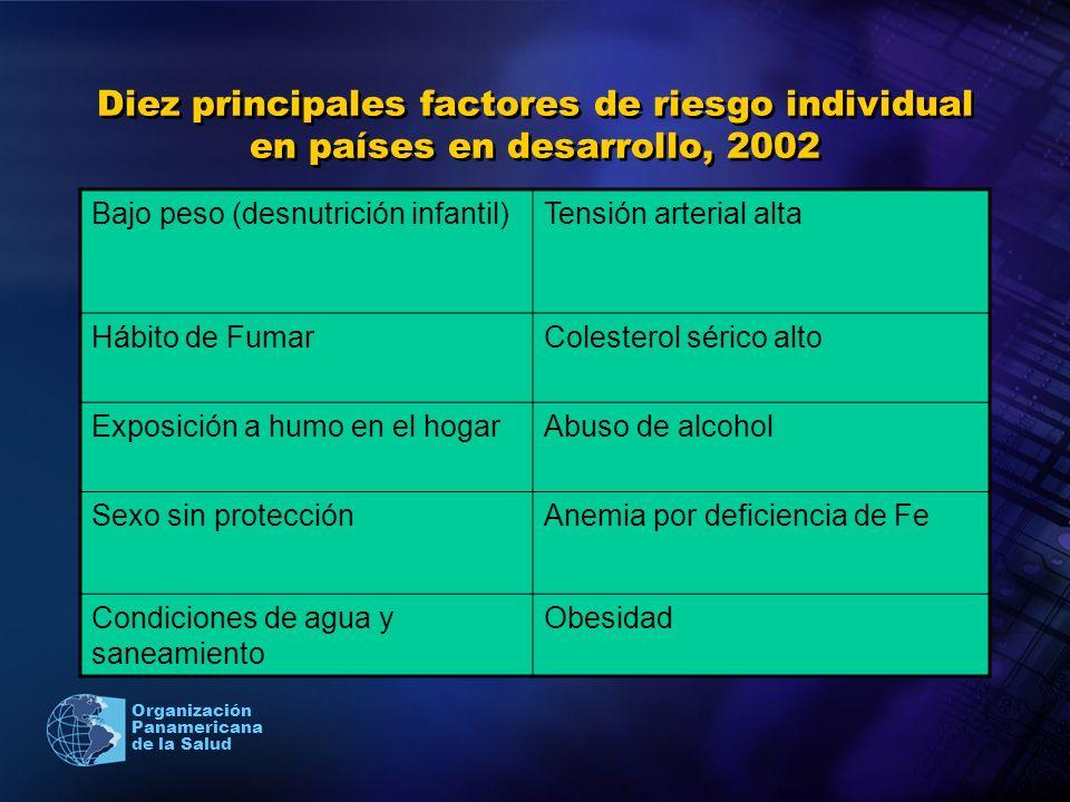 Organización Panamericana de la Salud Diez principales factores de riesgo individual en países en desarrollo, 2002 Bajo peso (desnutrición infantil)Te