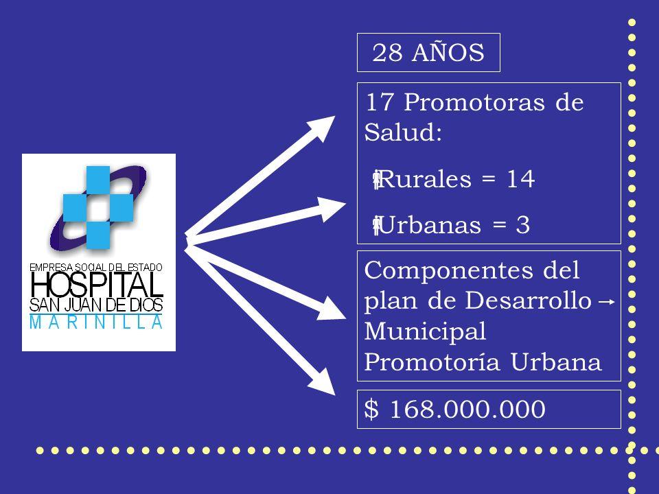 28 AÑOS 17 Promotoras de Salud: Rurales = 14 Urbanas = 3 Componentes del plan de Desarrollo Municipal Promotoría Urbana $ 168.000.000