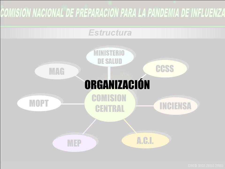 COSTA RICA 2004-2005 Estructura MINISTERIO DE SALUD MINISTERIO DE SALUD CCSS INCIENSA A.C.I.