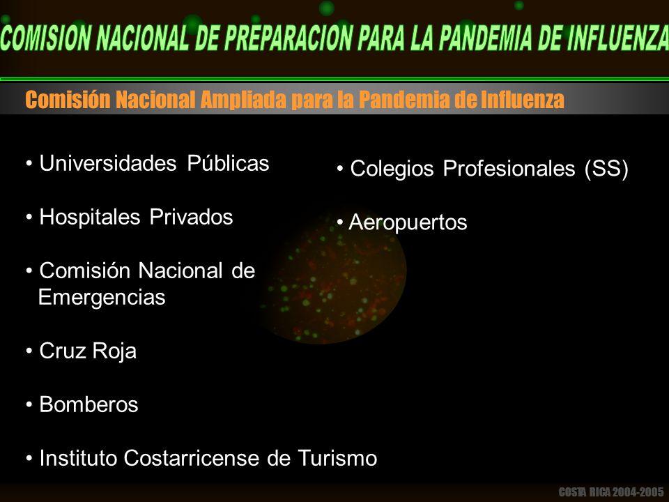 COSTA RICA 2004-2005 Comisión Nacional Ampliada para la Pandemia de Influenza Universidades Públicas Hospitales Privados Comisión Nacional de Emergencias Cruz Roja Bomberos Instituto Costarricense de Turismo Colegios Profesionales (SS) Aeropuertos