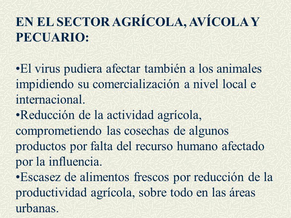 EN EL SECTOR AGRÍCOLA, AVÍCOLA Y PECUARIO: El virus pudiera afectar también a los animales impidiendo su comercialización a nivel local e internaciona