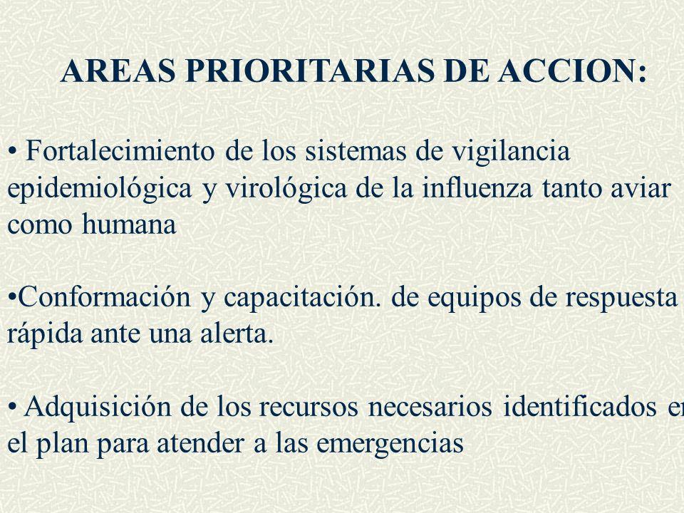 AREAS PRIORITARIAS DE ACCION: Fortalecimiento de los sistemas de vigilancia epidemiológica y virológica de la influenza tanto aviar como humana Confor