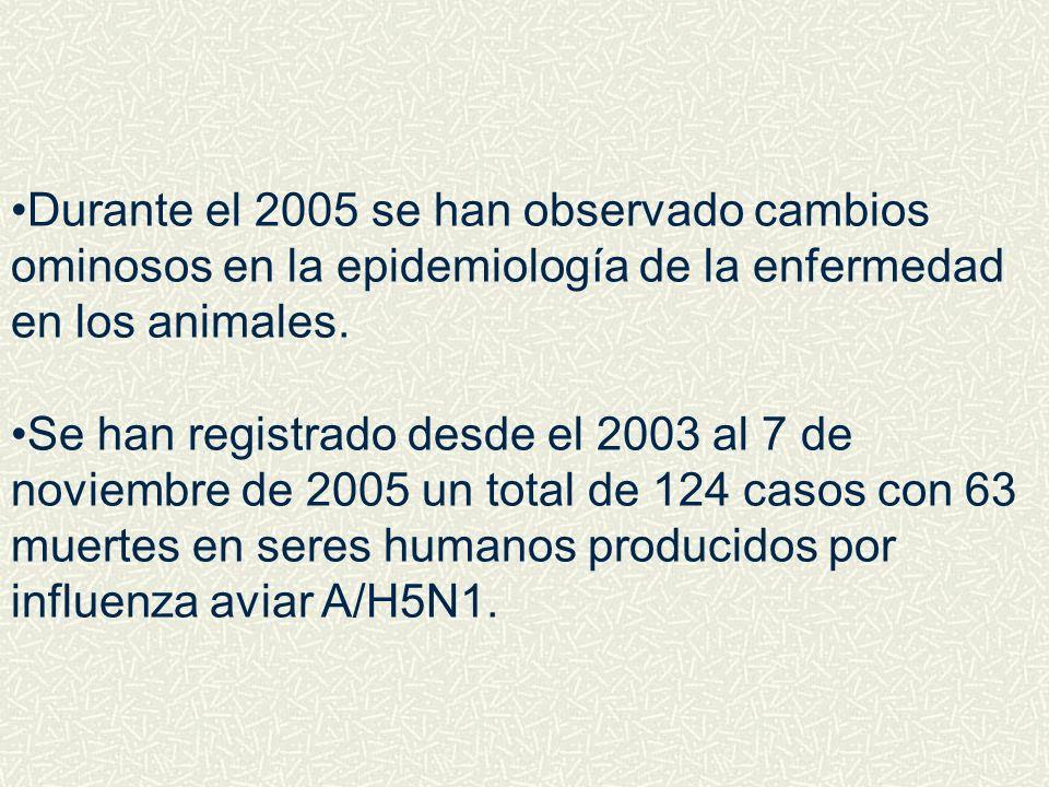 Durante el 2005 se han observado cambios ominosos en la epidemiología de la enfermedad en los animales. Se han registrado desde el 2003 al 7 de noviem
