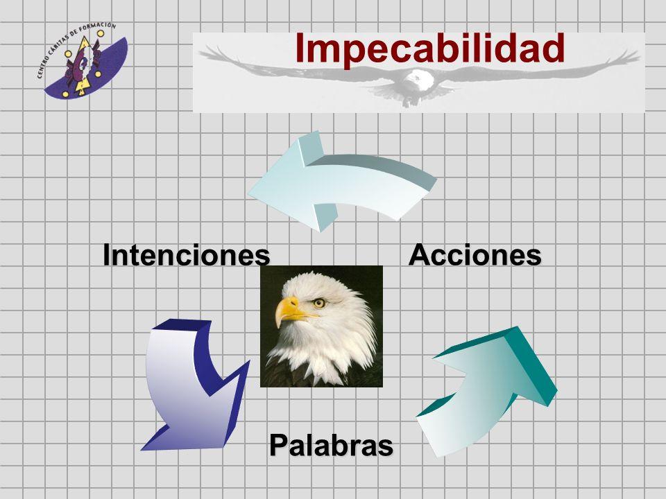 Intenciones Palabras Acciones Impecabilidad