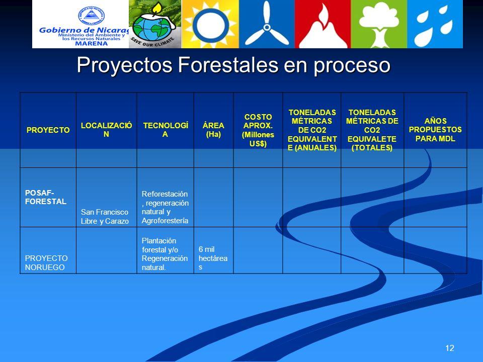 12 Proyectos Forestales en proceso PROYECTO LOCALIZACIÓ N TECNOLOGÍ A ÁREA (Ha) COSTO APROX. (Millones US$) TONELADAS MÉTRICAS DE CO2 EQUIVALENT E (AN
