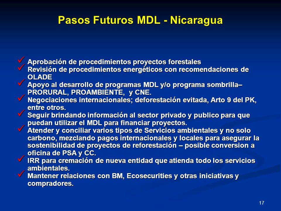 17 Pasos Futuros MDL - Nicaragua Aprobación de procedimientos proyectos forestales Aprobación de procedimientos proyectos forestales Revisión de proce