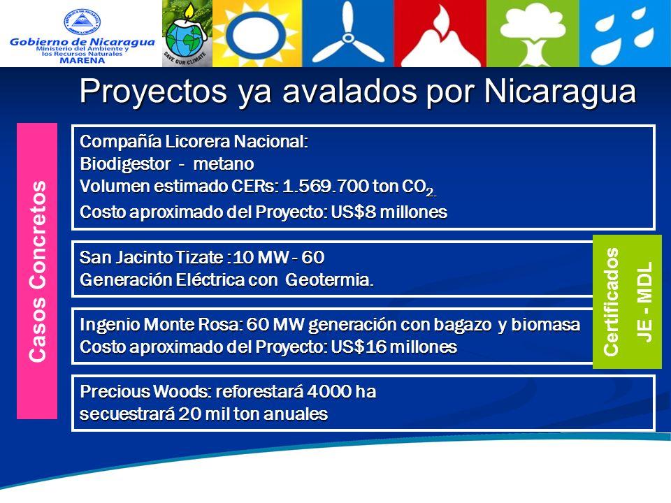 7 Proyectos ya avalados por Nicaragua Compañía Licorera Nacional: Biodigestor - metano Volumen estimado CERs: 1.569.700 ton CO 2. Costo aproximado del