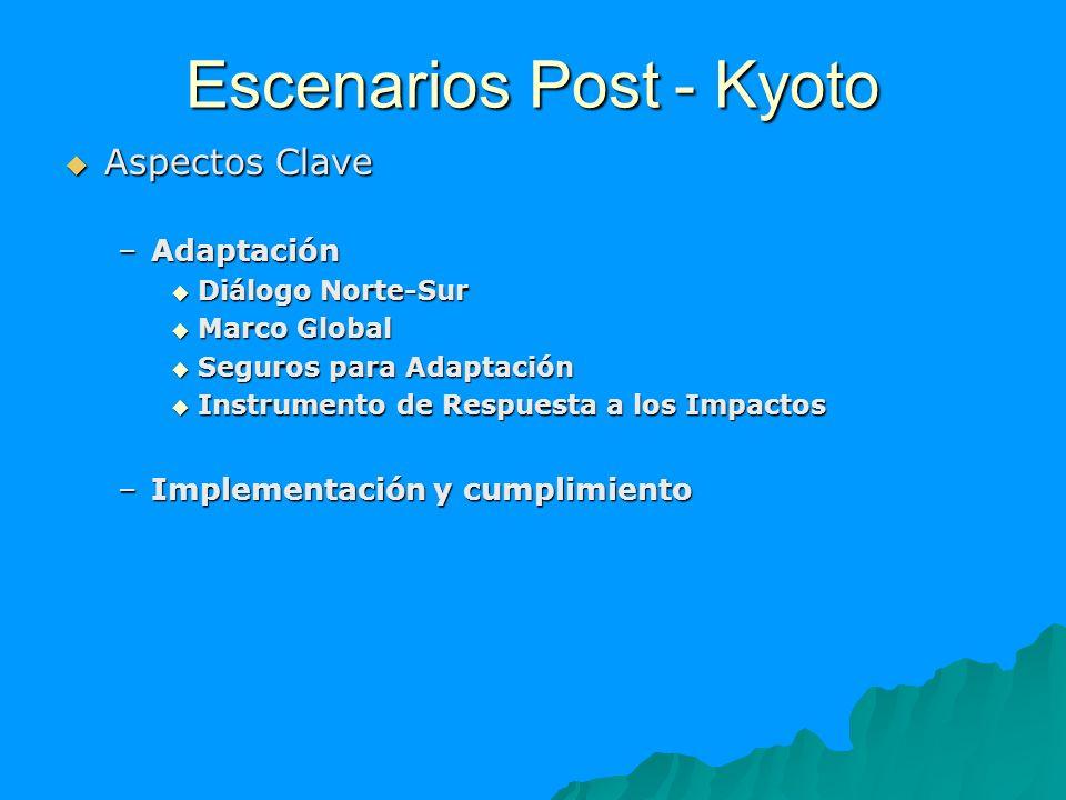 Escenarios Post - Kyoto Aspectos Clave Aspectos Clave –Adaptación Diálogo Norte-Sur Diálogo Norte-Sur Marco Global Marco Global Seguros para Adaptació