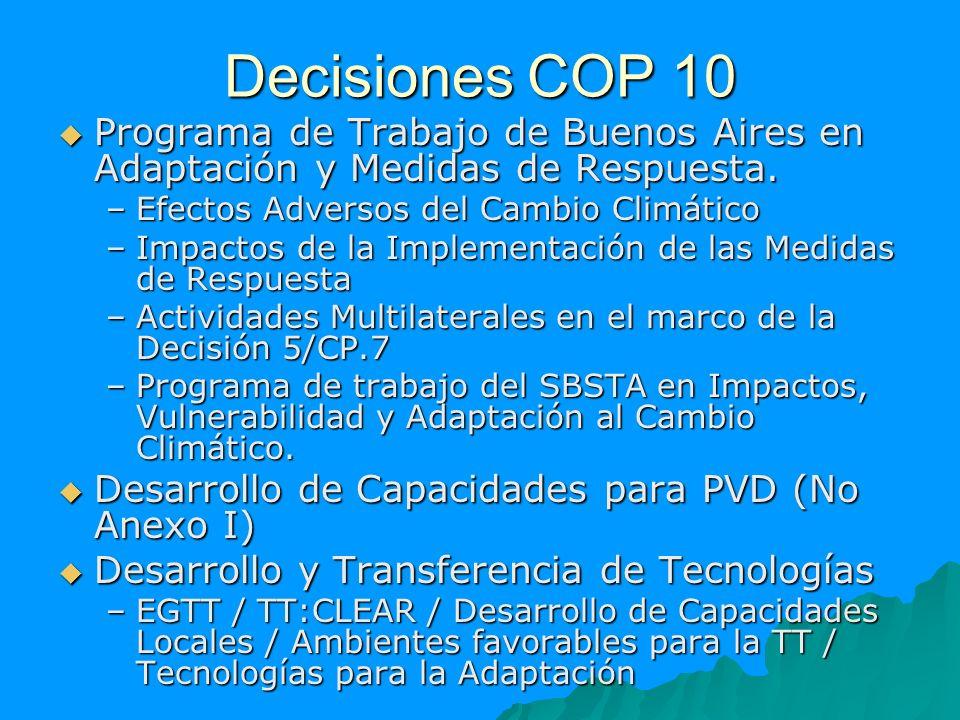 Decisiones COP 10 Programa de Trabajo de Buenos Aires en Adaptación y Medidas de Respuesta. Programa de Trabajo de Buenos Aires en Adaptación y Medida