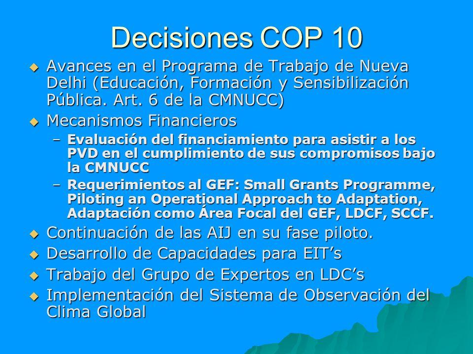Decisiones COP 10 Avances en el Programa de Trabajo de Nueva Delhi (Educación, Formación y Sensibilización Pública. Art. 6 de la CMNUCC) Avances en el