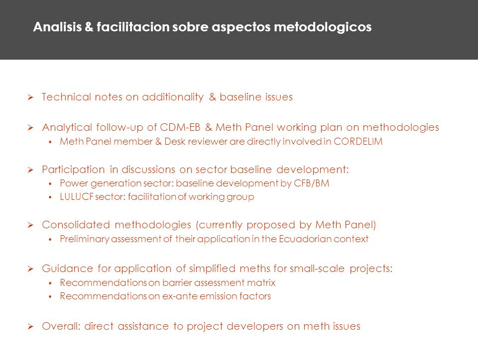 Analisis & facilitacion sobre aspectos metodologicos Technical notes on additionality & baseline issues Analytical follow-up of CDM-EB & Meth Panel working plan on methodologies Meth Panel member & Desk reviewer are directly involved in CORDELIM Participation in discussions on sector baseline development: Power generation sector: baseline development by CFB/BM LULUCF sector: facilitation of working group Consolidated methodologies (currently proposed by Meth Panel) Preliminary assessment of their application in the Ecuadorian context Guidance for application of simplified meths for small-scale projects: Recommendations on barrier assessment matrix Recommendations on ex-ante emission factors Overall: direct assistance to project developers on meth issues