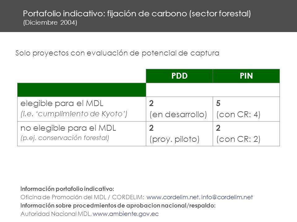 Portafolio indicativo: fijación de carbono (sector forestal) (Diciembre 2004) PDDPIN elegible para el MDL (i.e.