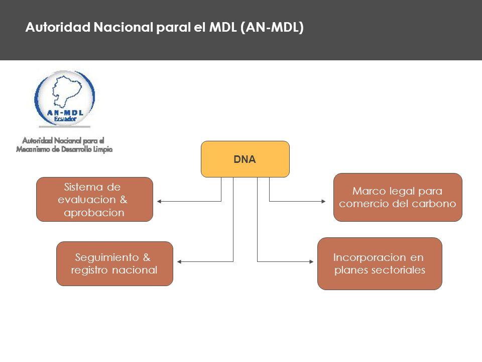 Autoridad Nacional paral el MDL (AN-MDL) Sistema de evaluacion & aprobacion DNA Seguimiento & registro nacional Incorporacion en planes sectoriales Marco legal para comercio del carbono
