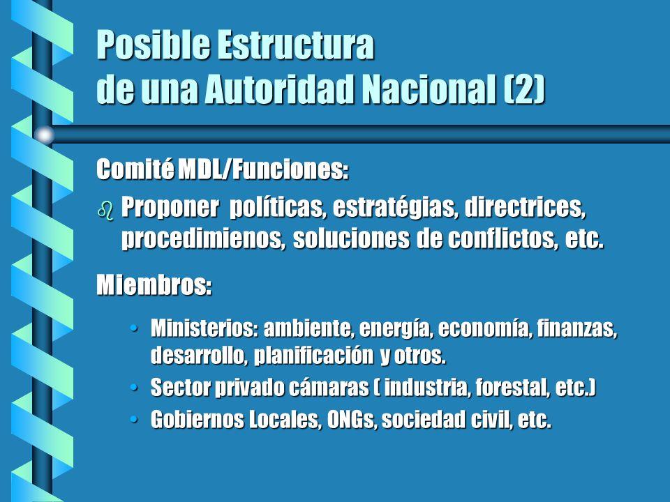Posible Estructura de una Autoridad Nacional (2) Comité MDL/Funciones: b Proponer políticas, estratégias, directrices, procedimienos, soluciones de co