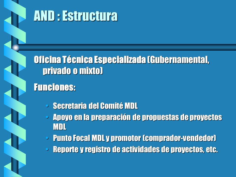 AND : Estructura Oficina Técnica Especializada (Gubernamental, privado o mixto) Funciones: Secretaria del Comité MDLSecretaria del Comité MDL Apoyo en