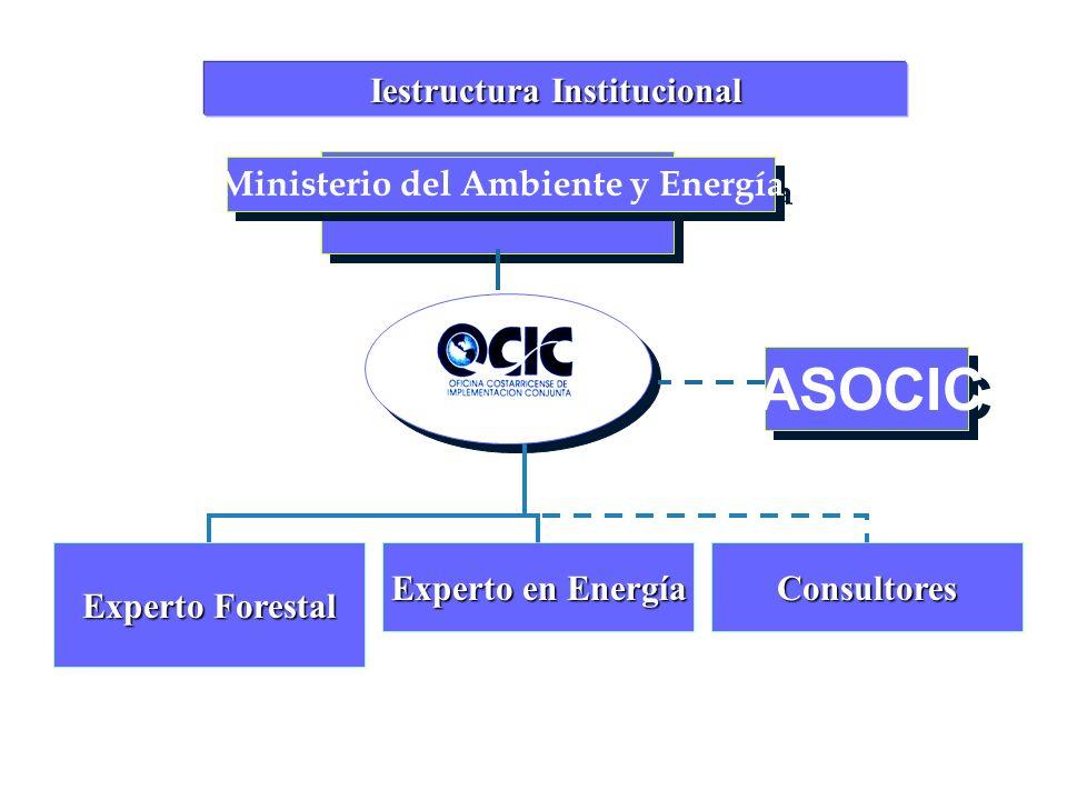 Ministerio del Ambiente y Energía ASOCIC Iestructura Institucional Experto Forestal Experto en Energía Consultores