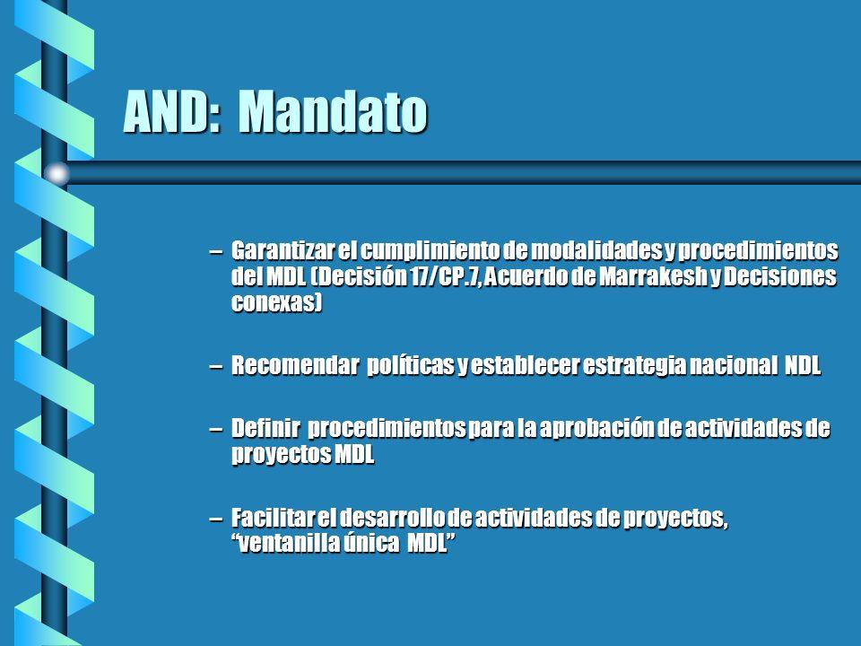 AND: Mandato –Garantizar el cumplimiento de modalidades y procedimientos del MDL (Decisión 17/CP.7, Acuerdo de Marrakesh y Decisiones conexas) –Recome