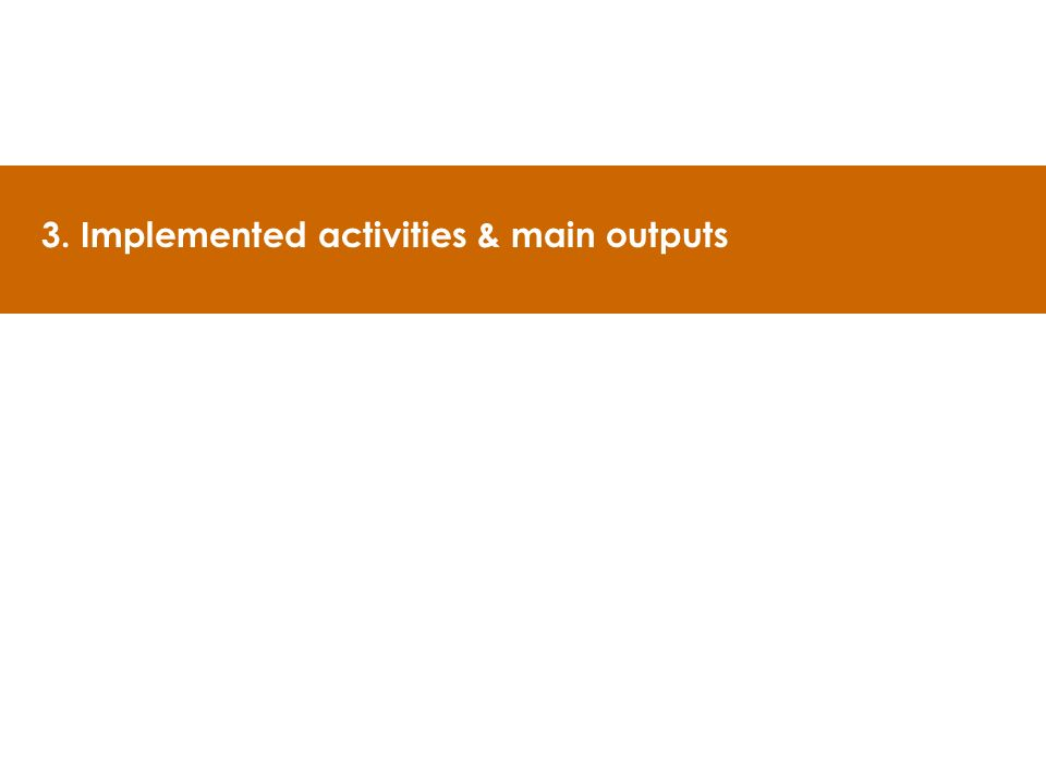 3. Implemented activities & main outputs