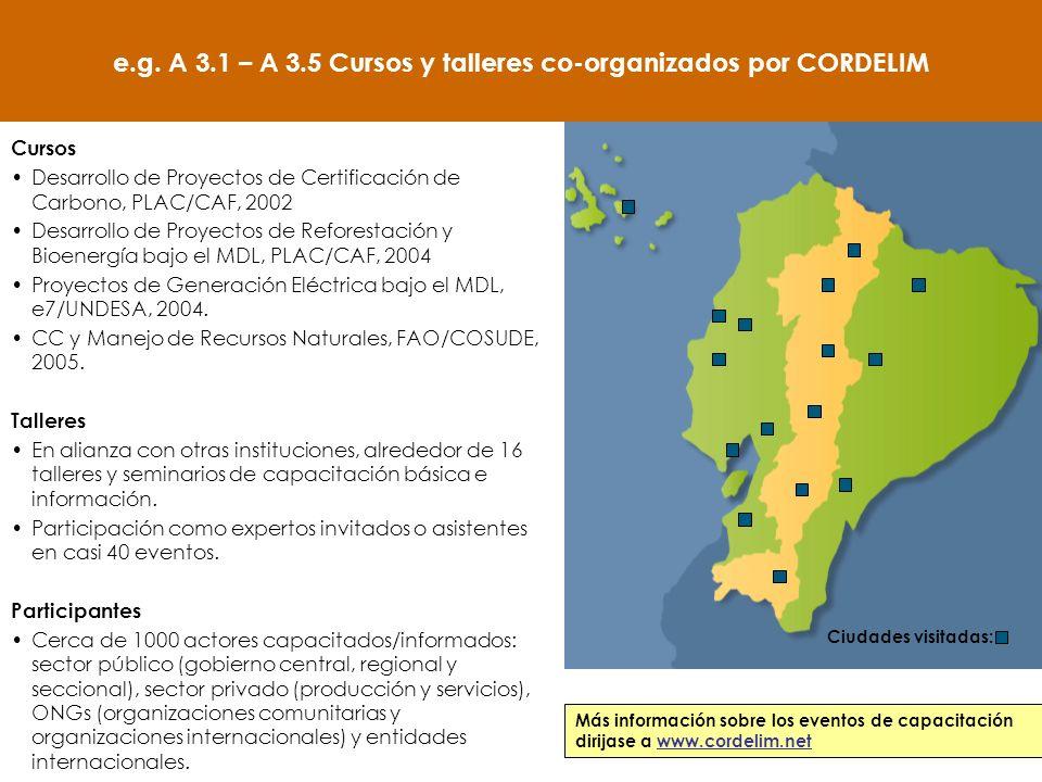 Cursos Desarrollo de Proyectos de Certificación de Carbono, PLAC/CAF, 2002 Desarrollo de Proyectos de Reforestación y Bioenergía bajo el MDL, PLAC/CAF, 2004 Proyectos de Generación Eléctrica bajo el MDL, e7/UNDESA, 2004.