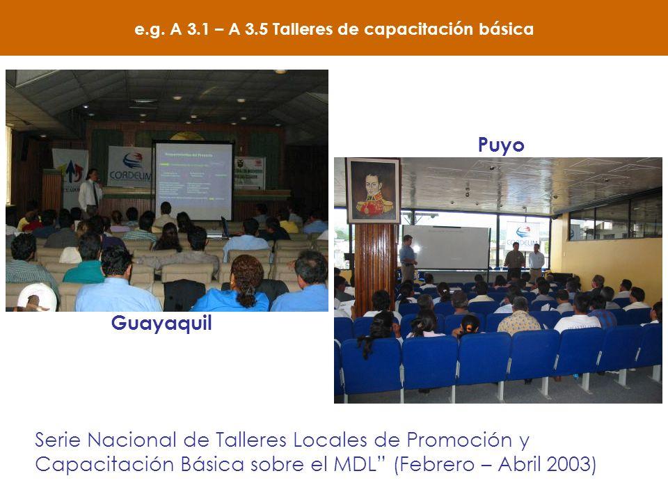e.g. A 3.1 – A 3.5 Talleres de capacitación básica Serie Nacional de Talleres Locales de Promoción y Capacitación Básica sobre el MDL (Febrero – Abril