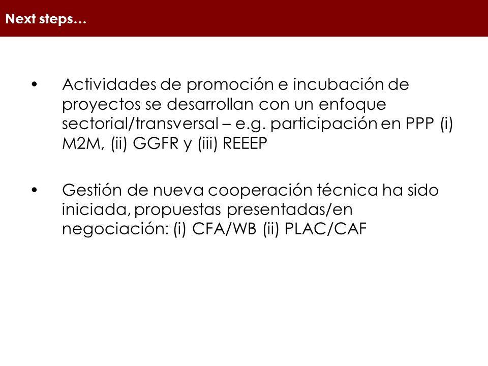 Next steps… Actividades de promoción e incubación de proyectos se desarrollan con un enfoque sectorial/transversal – e.g.
