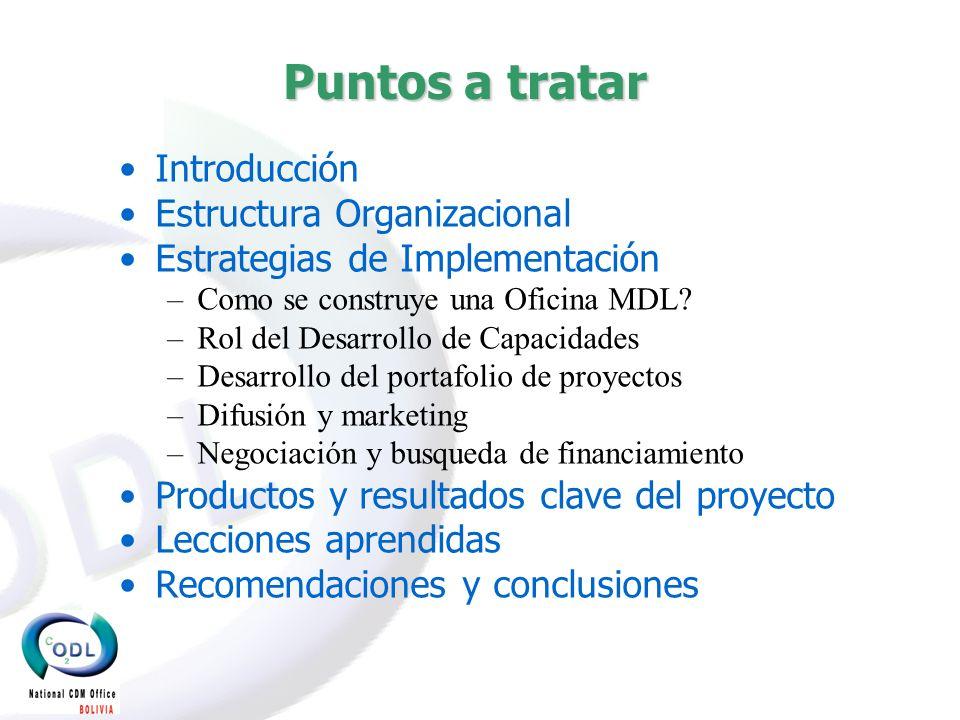 Puntos a tratar Introducción Estructura Organizacional Estrategias de Implementación –Como se construye una Oficina MDL.