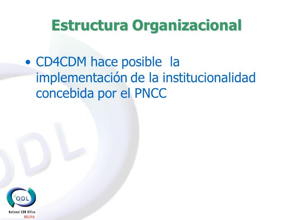 ESTRUCTURA INSTITUCIONAL (2003-2005) ESTRUCTURA INSTITUCIONAL (2003-2005) Ministerio de Desarrollo Sostenible Viceministerio de Recursos Naturales y Medio Ambiente (AND) Programa Nacional de Cambios Climáticos Oficina de Desarrollo Limpio Consejo Interinstitucional de Cambio Climático