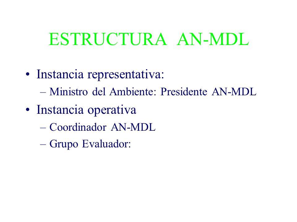 ESTRUCTURA AN-MDL Instancia representativa: –Ministro del Ambiente: Presidente AN-MDL Instancia operativa –Coordinador AN-MDL –Grupo Evaluador: