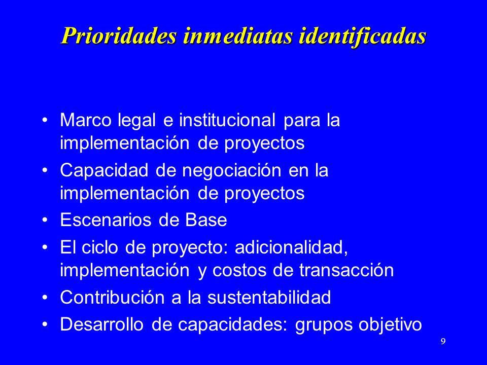 10 Prioridades mediatas Análisis de riesgo Investigación en temas asociados Desarrollo de Guías y Manuales Material de entrenamiento Análisis y contribución al proceso de decisión global
