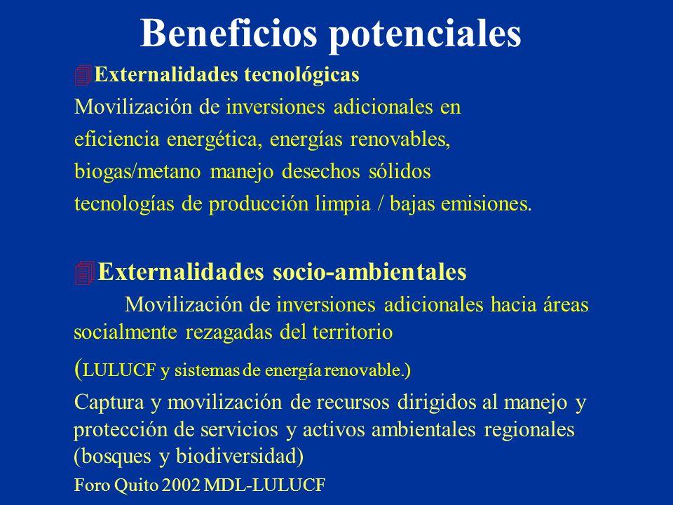 Beneficios potenciales 4Externalidades tecnológicas Movilización de inversiones adicionales en eficiencia energética, energías renovables, biogas/meta