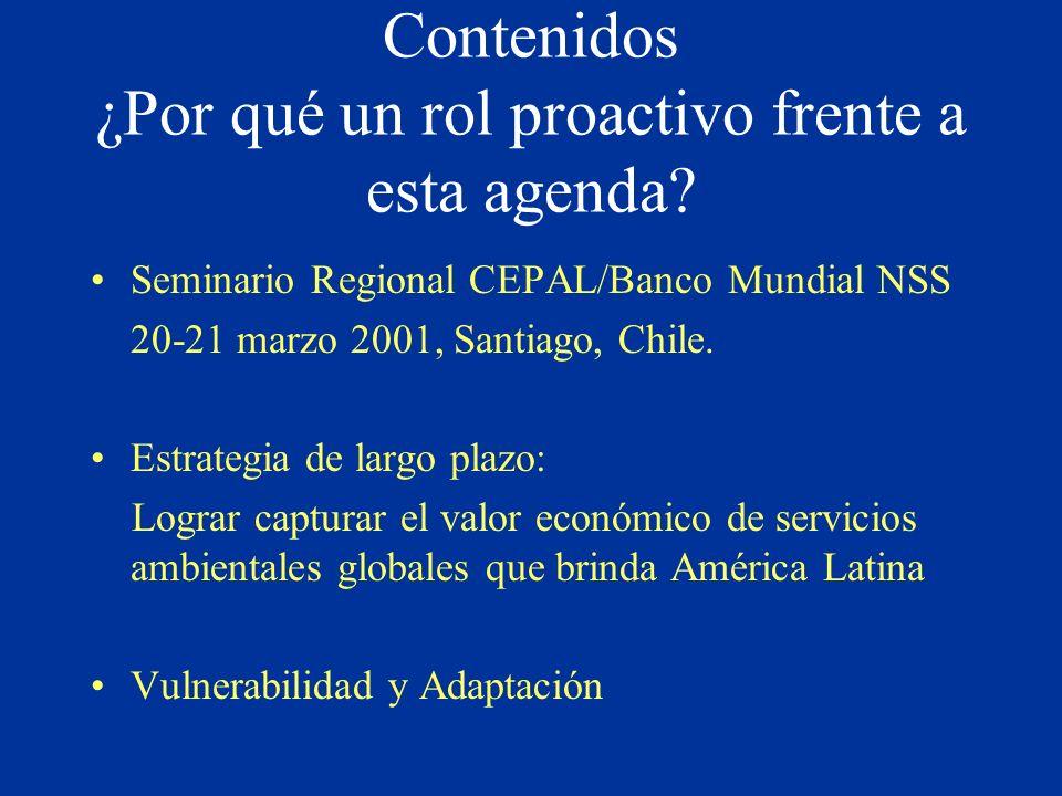 Contenidos ¿Por qué un rol proactivo frente a esta agenda? Seminario Regional CEPAL/Banco Mundial NSS 20-21 marzo 2001, Santiago, Chile. Estrategia de