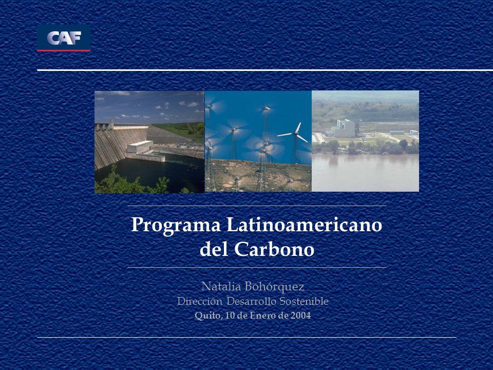Programa Latinoamericano del Carbono Natalia Bohórquez Dirección Desarrollo Sostenible Quito, 10 de Enero de 2004