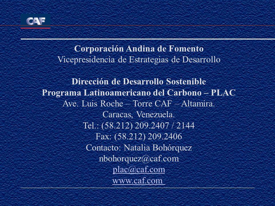 Corporación Andina de Fomento Vicepresidencia de Estrategias de Desarrollo Dirección de Desarrollo Sostenible Programa Latinoamericano del Carbono – P