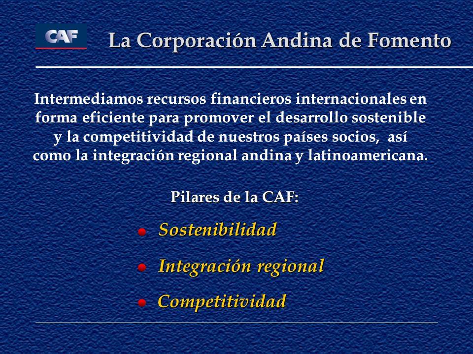 Intermediamos recursos financieros internacionales en forma eficiente para promover el desarrollo sostenible y la competitividad de nuestros países so