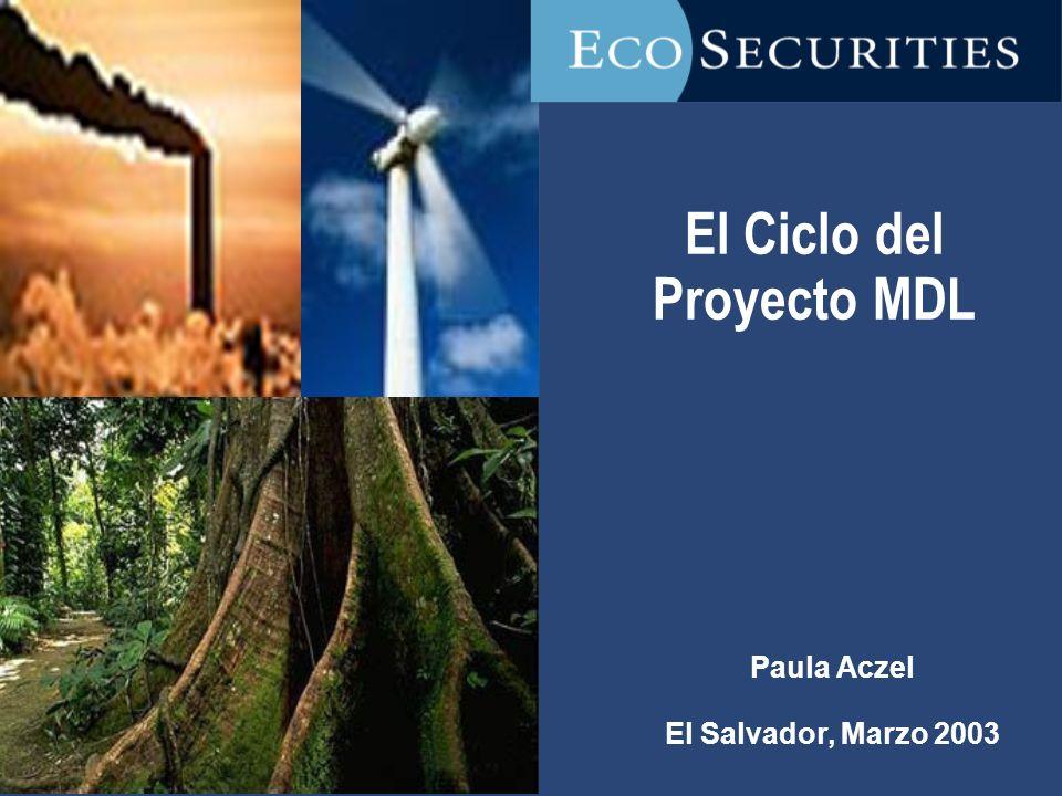 El Ciclo del Proyecto MDL Paula Aczel El Salvador, Marzo 2003