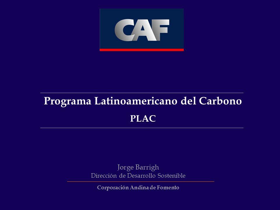 Programa Latinoamericano del Carbono PLAC Jorge Barrigh Dirección de Desarrollo Sostenible Corporación Andina de Fomento