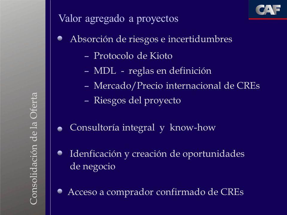 Consolidación de la Oferta Absorción de riesgos e incertidumbres Consultoría integral y know-how – Protocolo de Kioto – MDL - reglas en definición – M