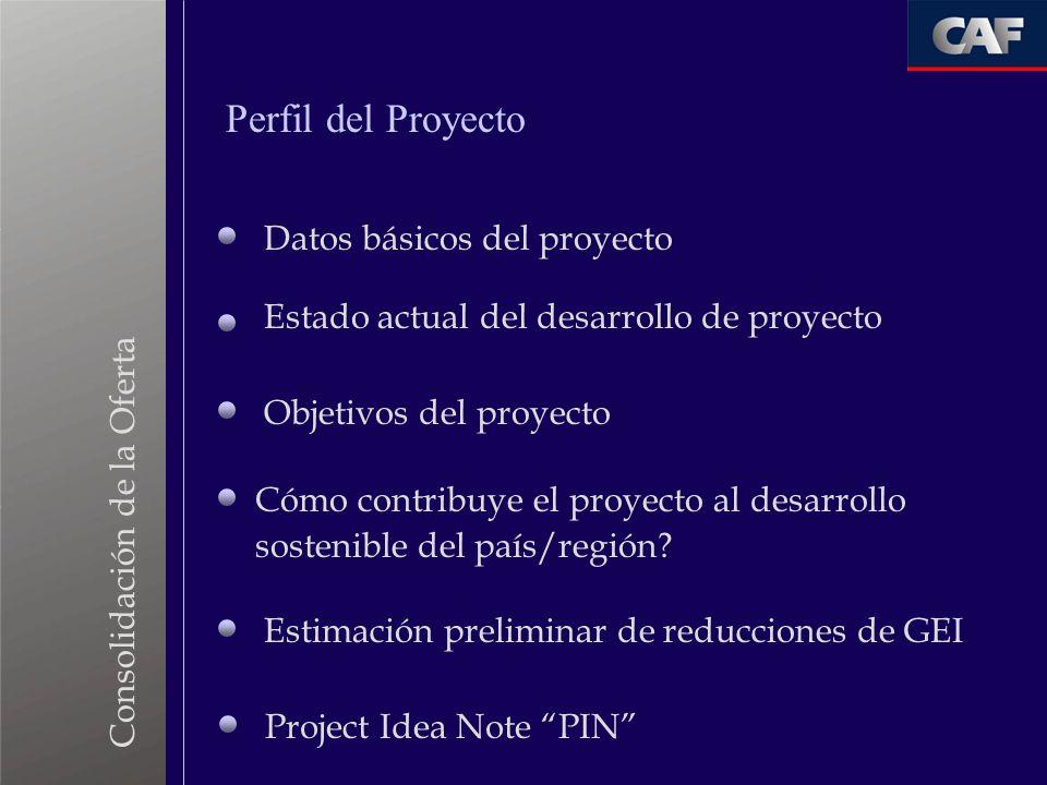 Consolidación de la Oferta Datos básicos del proyecto Estado actual del desarrollo de proyecto Objetivos del proyecto Cómo contribuye el proyecto al d