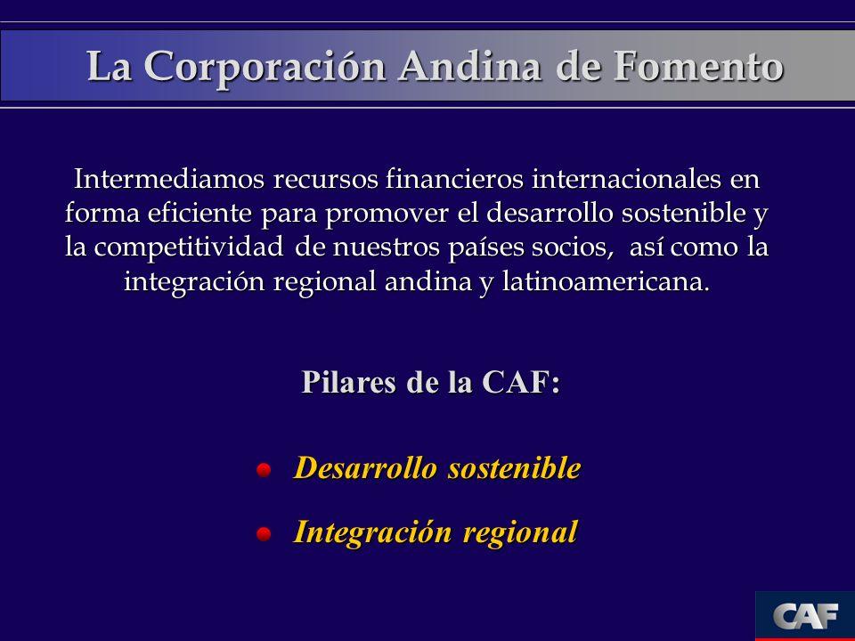 Países miembros de la CAF Países Accionistas CAF Otros Argentina Brasil Jamaica Panamá Trinidad & Tobago 22 Bancos privados de la región.