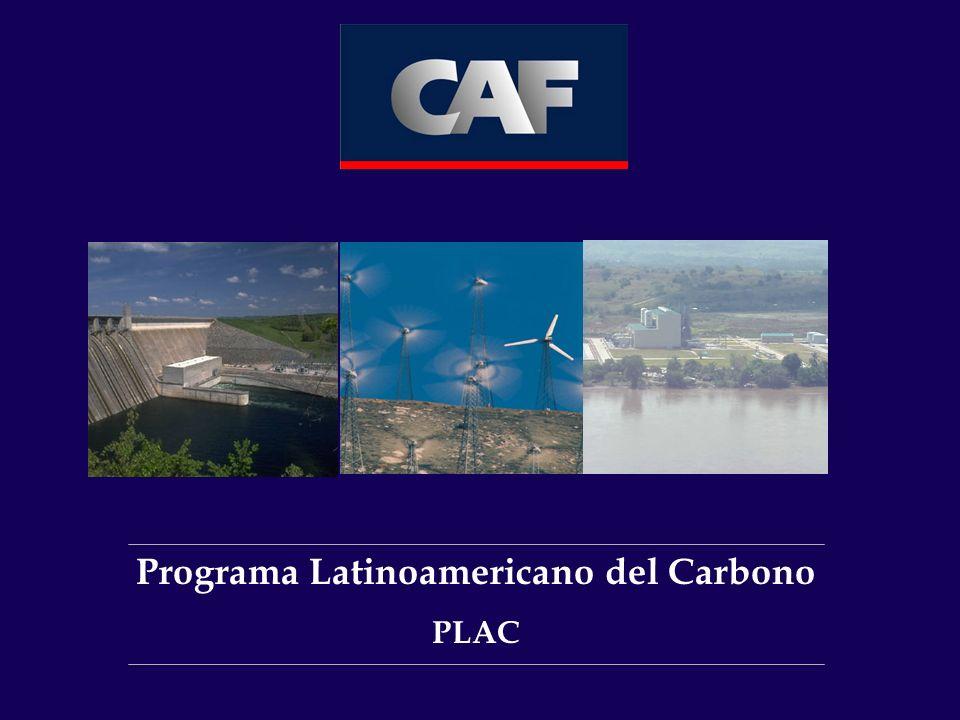 Programa Latinoamericano del Carbono PLAC