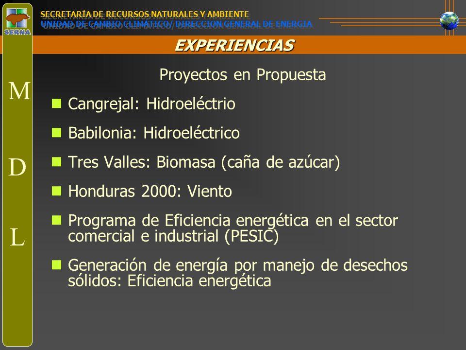 EXPERIENCIAS Proyectos en Propuesta Cangrejal: Hidroeléctrio Babilonia: Hidroeléctrico Tres Valles: Biomasa (caña de azúcar) Honduras 2000: Viento Pro