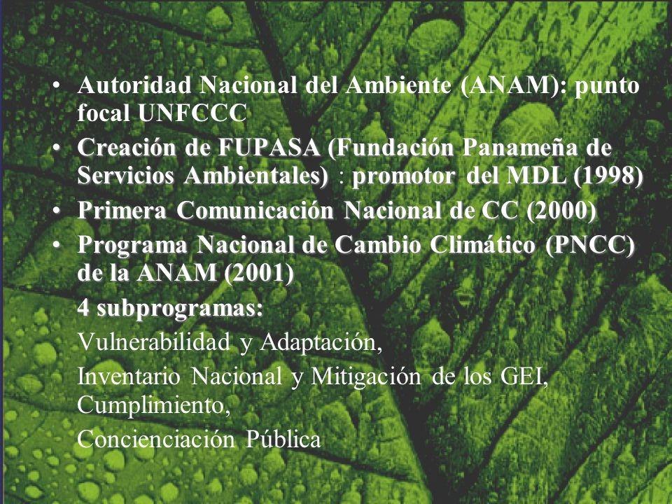 Autoridad Nacional del Ambiente (ANAM): punto focal UNFCCC Creación de FUPASA (Fundación Panameña de Servicios Ambientales) promotor del MDL (1998)Cre