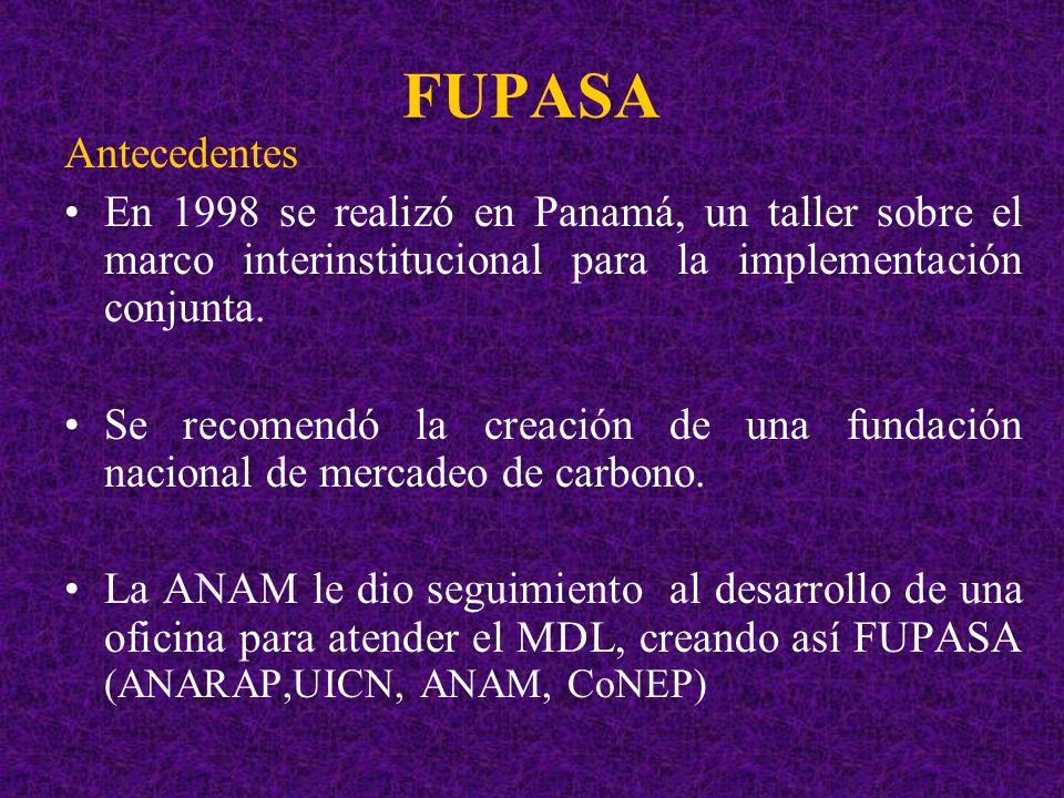 FUPASA Antecedentes En 1998 se realizó en Panamá, un taller sobre el marco interinstitucional para la implementación conjunta. Se recomendó la creació
