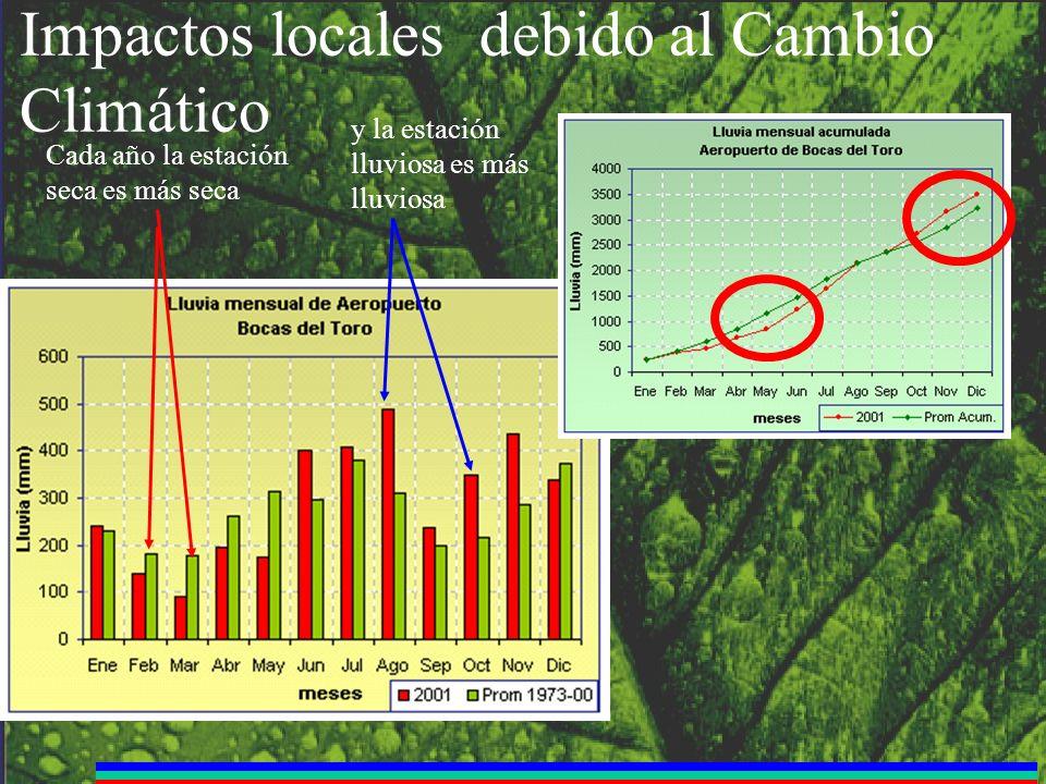 Impactos locales debido al Cambio Climático Cada año la estación seca es más seca y la estación lluviosa es más lluviosa