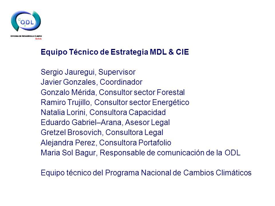 Equipo Técnico de Estrategia MDL & CIE Sergio Jauregui, Supervisor Javier Gonzales, Coordinador Gonzalo Mérida, Consultor sector Forestal Ramiro Truji