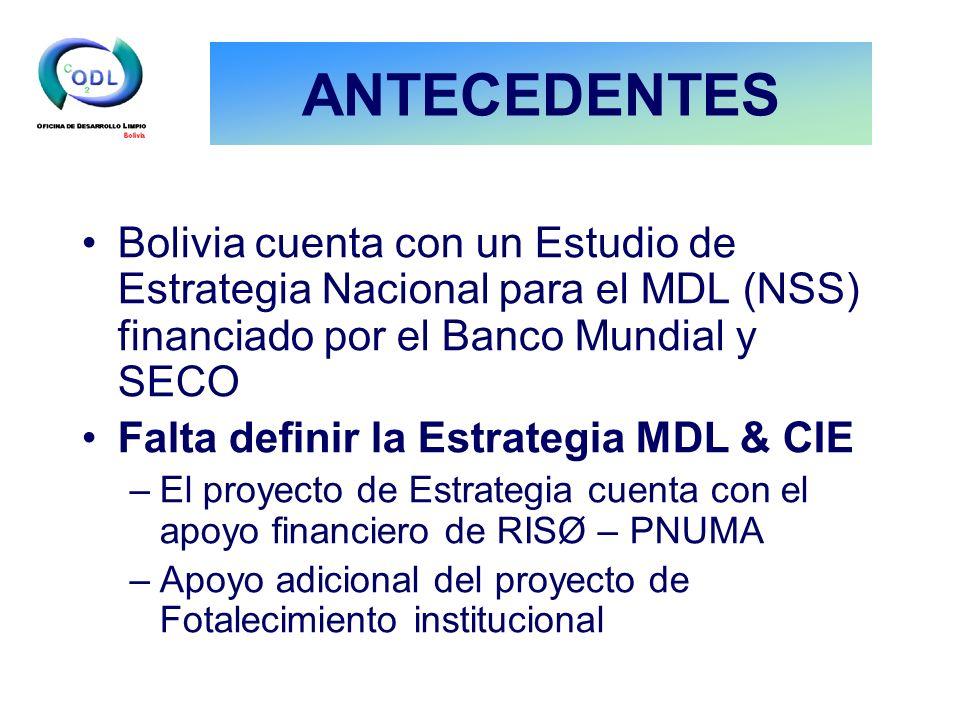ANTECEDENTES Bolivia cuenta con un Estudio de Estrategia Nacional para el MDL (NSS) financiado por el Banco Mundial y SECO Falta definir la Estrategia MDL & CIE –El proyecto de Estrategia cuenta con el apoyo financiero de RISØ – PNUMA –Apoyo adicional del proyecto de Fotalecimiento institucional